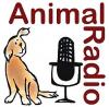 animalradio2016.jpg