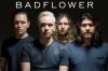 Badflower.jpg