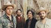 wildfeathers071218.jpg