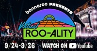 bonnaroo-2020---cropped.jpg