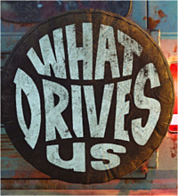 what-drives-us-2021.jpg